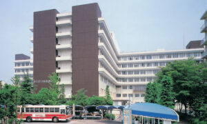 Hospitals in Japan